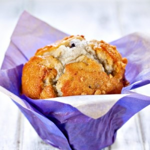 Muffin by Serge Bertasius Photography courtesy of Freedigitalphoto.net ID-100277627
